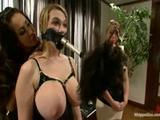 Twee gehoorzame sex slavinnen voor de sexy meesteres